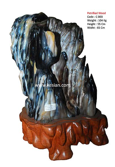 Petrified Wood source in Indonesia